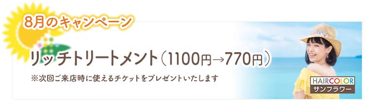 2020年8月のキャンペーン/リッチトリートメント(1100円→770円)