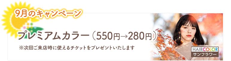 2020年9月のキャンペーン/プレミアムカラー(550円→280円)