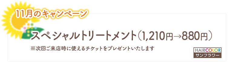 2020年11月のキャンペーン/スペシャルトリートメント(1,210円→880円)
